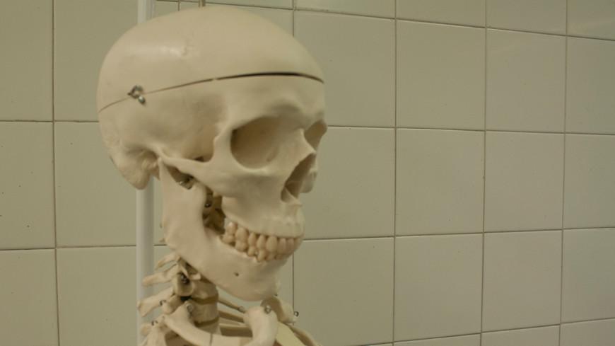 Скелет пропавшего 11 лет назад британца нашли в колодце на Кипре