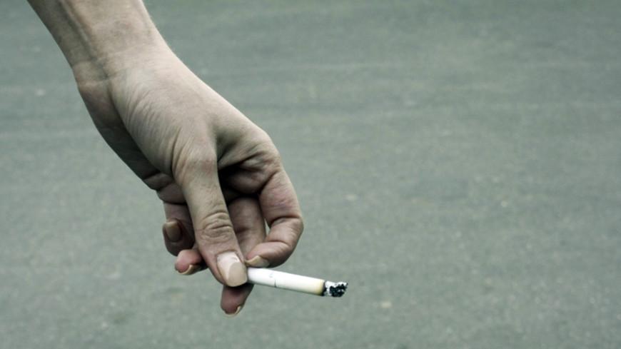 Эксперт: Повышение акцизов на табак приведет к созданию черного рынка
