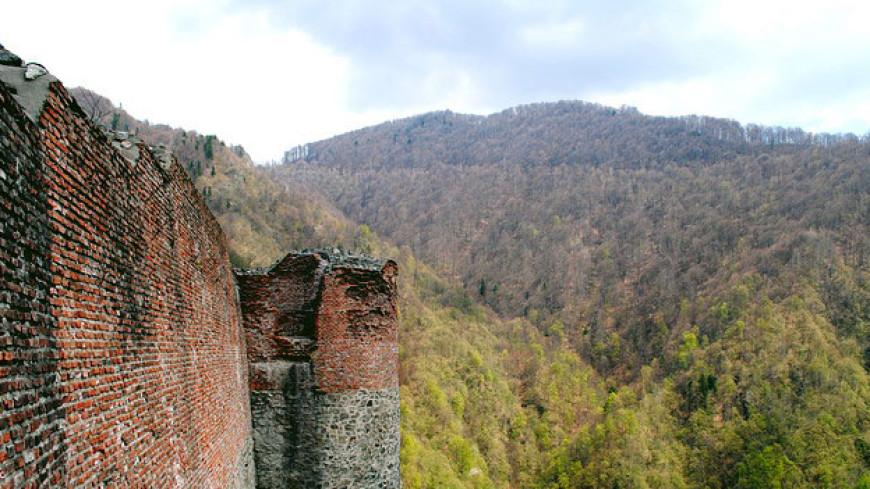 Замок Дракулы в Румынии заблокировали медведи