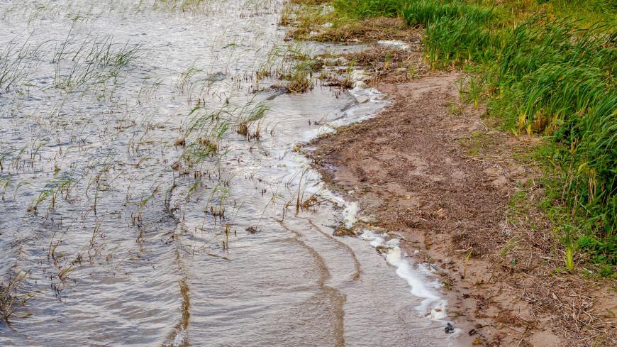Экологическая катастрофа под Хабаровском: в озеро попали тонны мазута