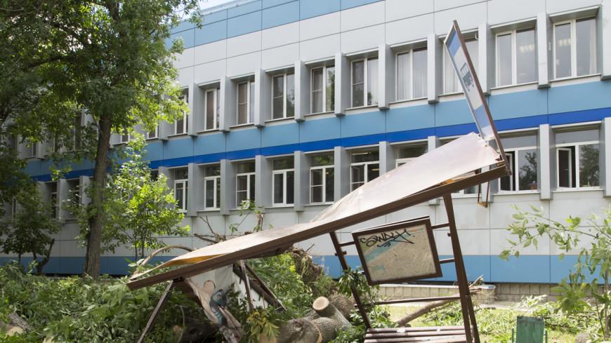 На остановку на востоке Москвы упало дерево