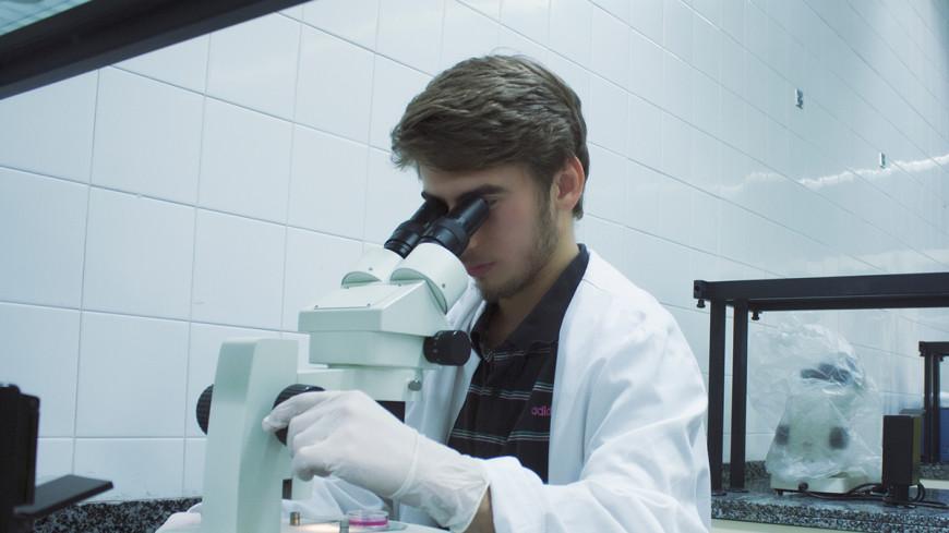 Ученые в Беларуси научились лечению стволовыми клетками