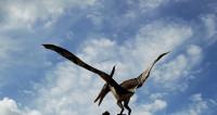 Ученые подсчитали, сколько видов динозавров жило на Земле