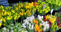 Трагедия в Ростове обогатила торговцев цветами и мошенников