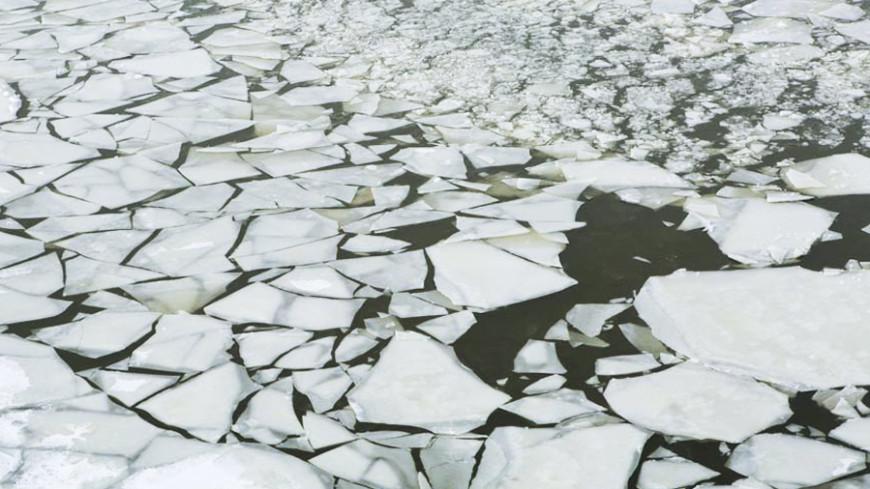 В Москве спасли уплывшего на льдине ребенка