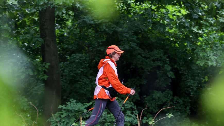 Что такое скандинавская ходьба, или Зачем пенсионеры выгуливают палки