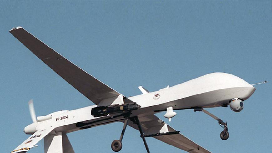 В сети набирает популярность видео нападения пеликана на дрон