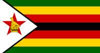 СМИ: Преемник Мугабе по кличке Крокодил сбежал из страны
