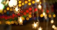 Трамп зажег огни на главной рождественской елке в США