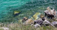 Удар по экосистеме: турбазы сливают нечистоты рядом с Байкалом