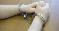 Пекарь из Забайкалья задержан в Москве за кражу мопса