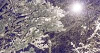 Снежная буря в Магадане: водители приковывают колеса цепями