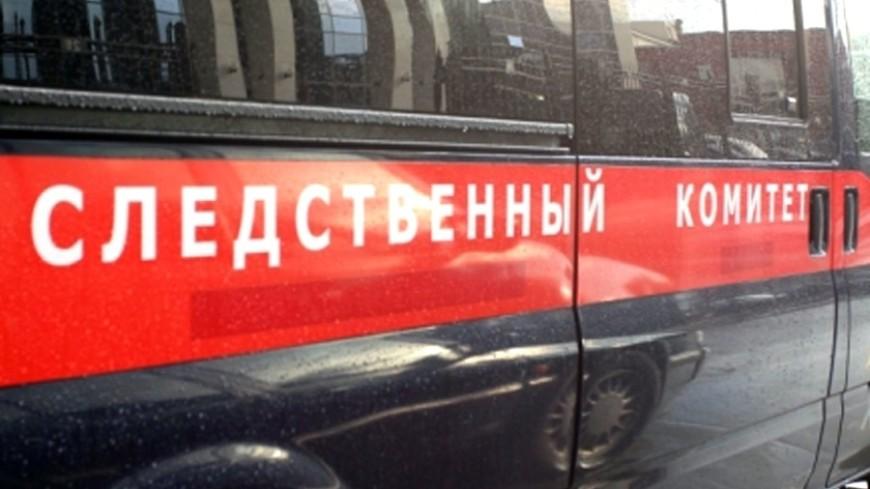 В Красноярске полиция и СК ищут сжигающих щенков подростков