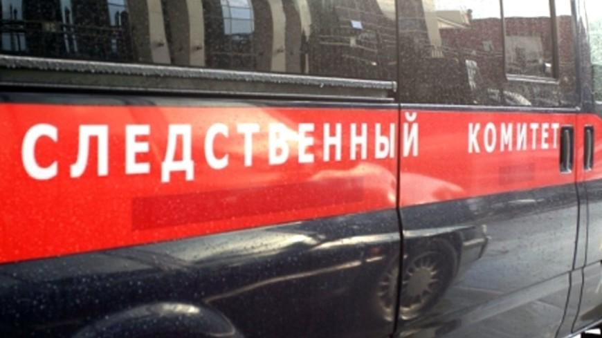 Няня убила мать троих детей в Екатеринбурге