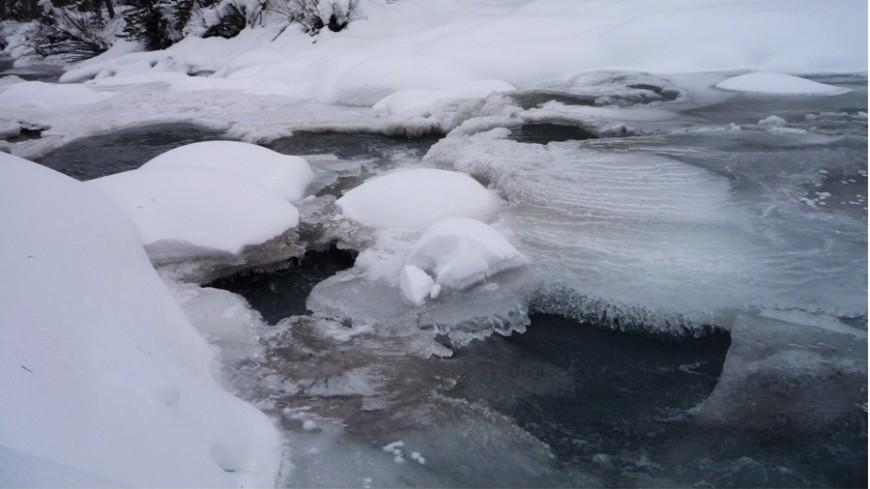 Жители Ямала топором откололи ото льда примерзшего щенка