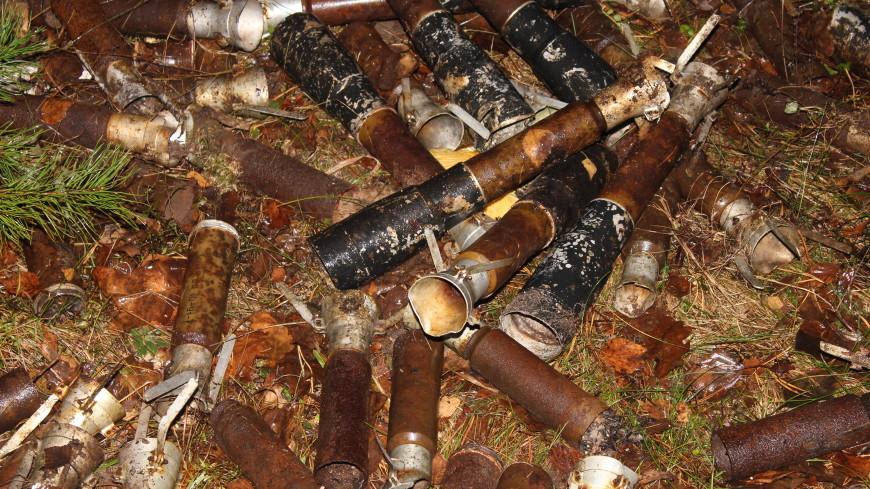 Врязанском лесу отыскали склад боеприпасов