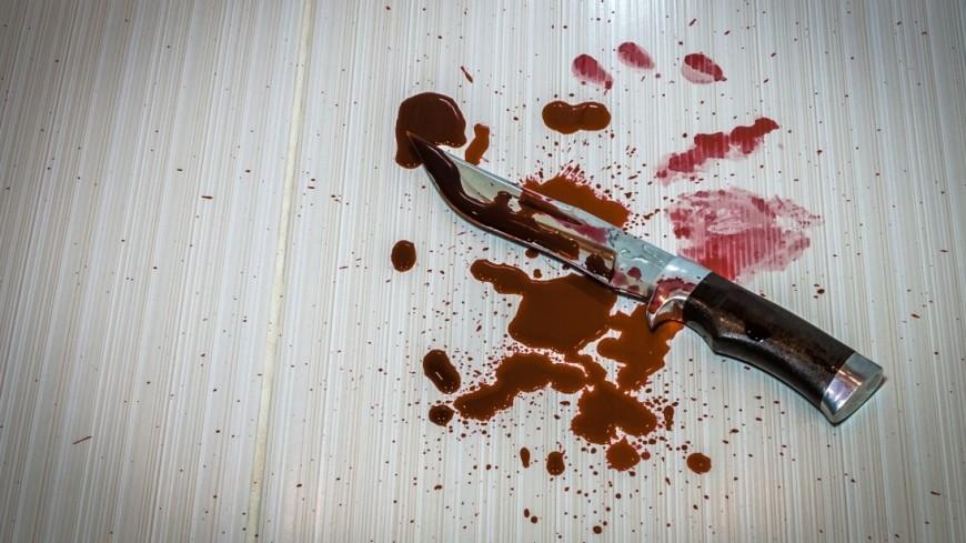 Детали  убийства вмосковском колледже— Кровавый урок
