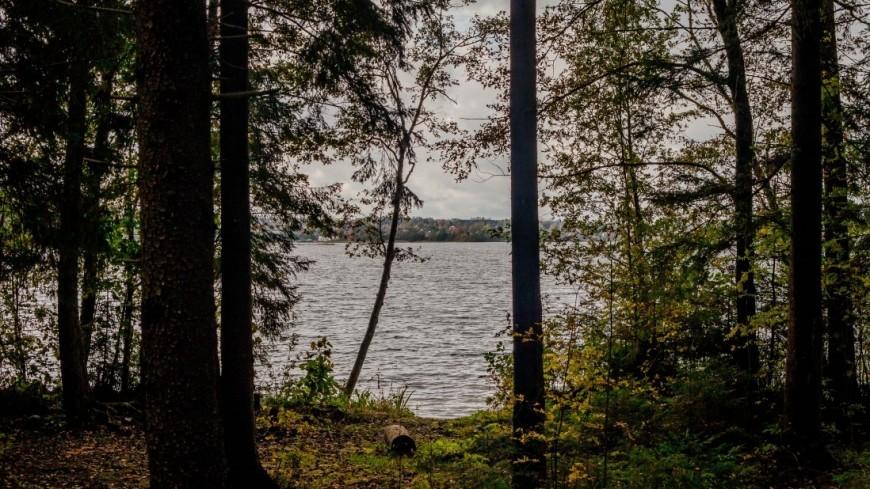 В озере под Челябинском перевернулась лодка с людьми