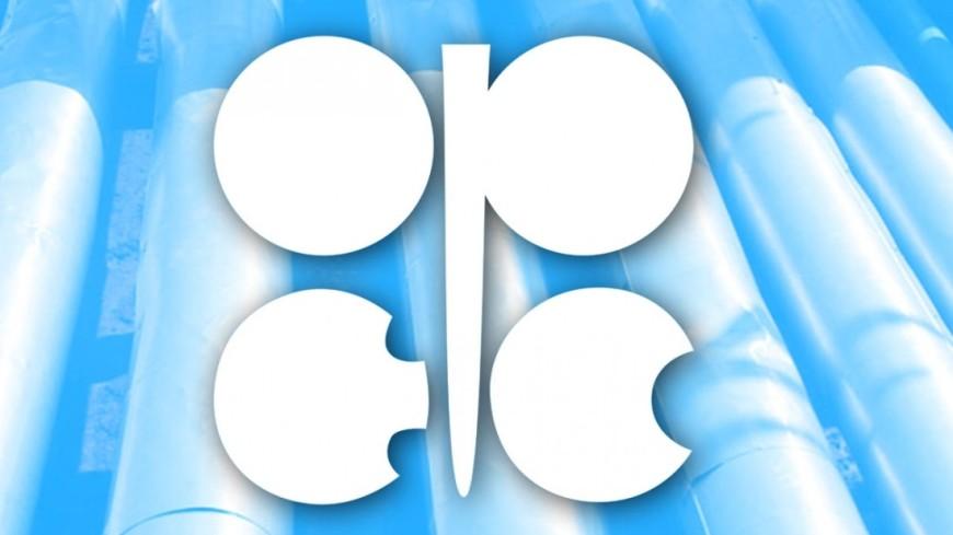 ОПЕК подняла прогноз мирового спроса нанефть к 2022г.