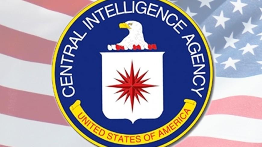 Размещен собственный ежедневник Усамы бен Ладена
