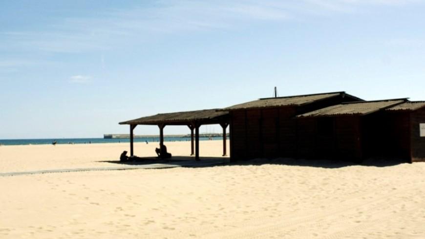 Пропавший лайнер «Любовь Орлова» вынесло на пляж в Калифорнии