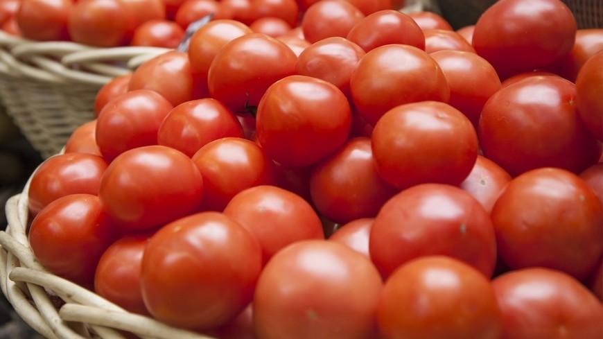 Возобновлены поставки турецких томатов в Российскую Федерацию