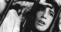 Фильму «Летят журавли» исполняется 60 лет