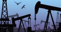 К соглашению ОПЕК+ о сокращении добычи нефти присоединятся 10 стран