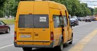 В маршрутном такси Новосибирска обнаружили колонию грибов
