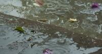 Ураган в Москве: погибла девочка, еще 12 пострадали