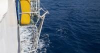 ВМС Аргентины: зафиксированный шум не исходит от пропавшей подлодки