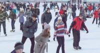На юге Москвы появится спорткомплекс с катком