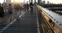 Снос моста в Нью-Йорке превратили в реалити-шоу