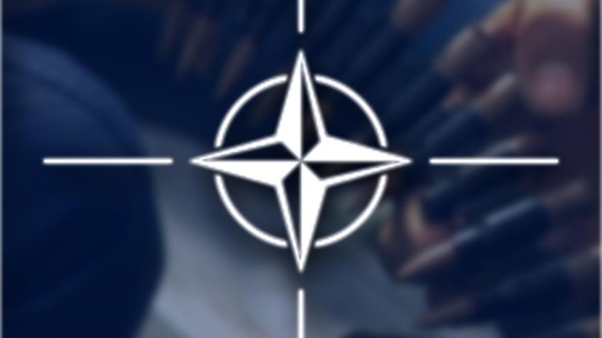 Лимоновцы закидали кабинет НАТО в столице дымовыми шашками