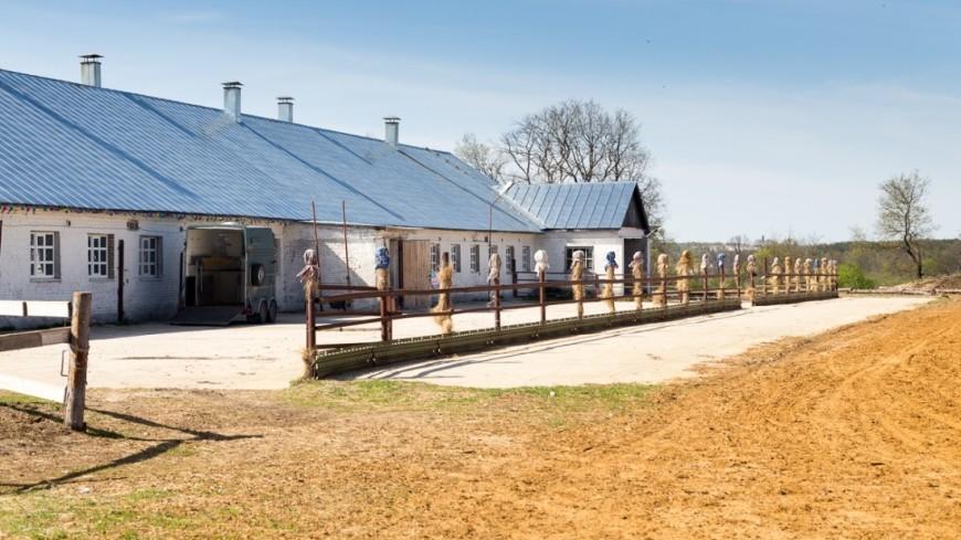 Стартап по-русски: фермерство без мяса, электричества и оборудования