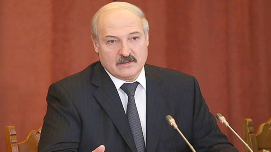 Блестящая работа: Лукашенко наградил обезвредивших грабителя силовиков