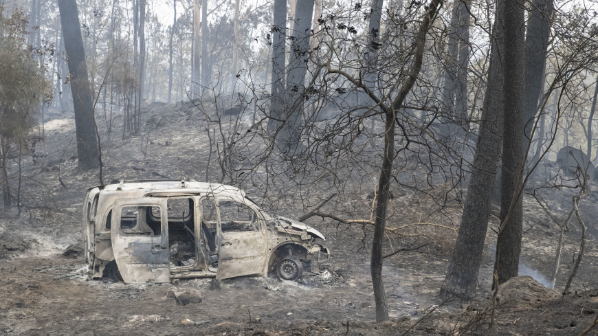 Пожары вПортугалии иИспании забрали жизни 9-ти человек
