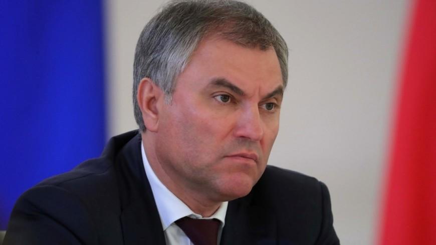 Народные избранники Государственной думы планируют поездку вСирию
