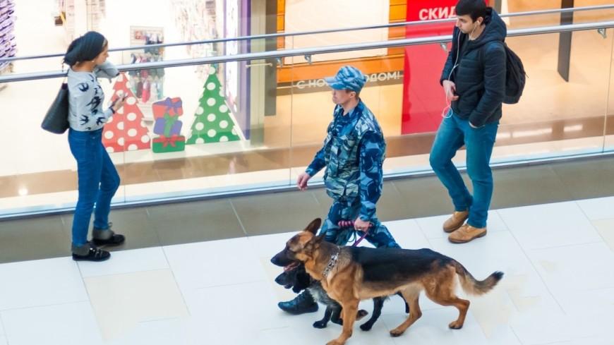 ФСБ: «Телефонные террористы» нанесли Москве ущерб в 150 млн рублей