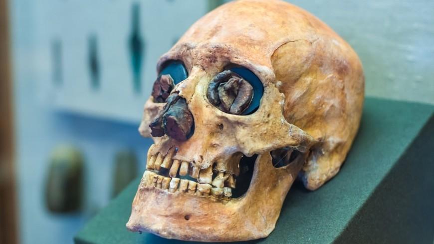 В зубах древнего человека нашли вирус гепатита В
