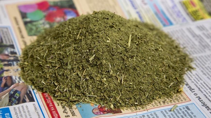 Американцам случайно по почте прислали почти 30 килограммов марихуаны