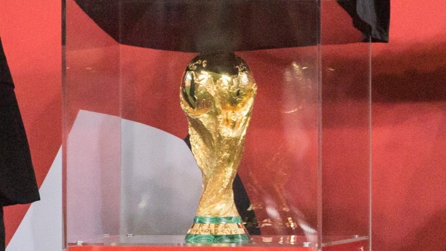 Кубок чемпионата мира по футболу прибыл в Воронеж