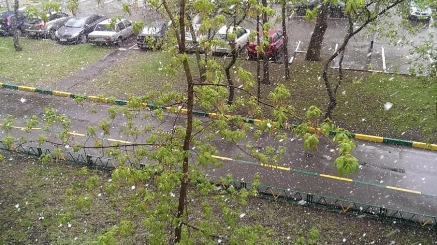 В Московской области выпал первый снег