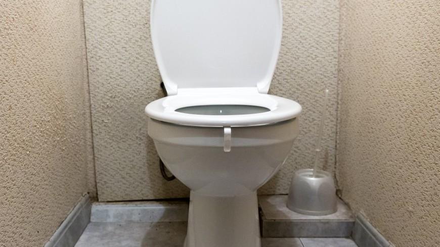 Неизвестное двухметровое существо из туалета напугало малазийцев