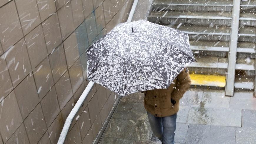 Зима вернулась: в ХМАО выпал мокрый снег