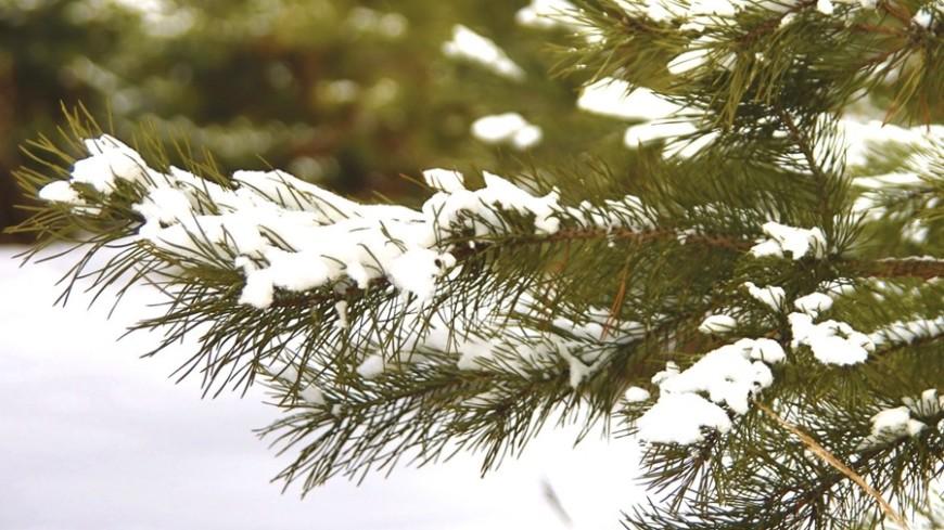 Гидрометцентр предупредил оснеге в столице России ввыходные