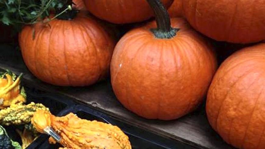 """""""© Фото: Дмитрий Альшин, МТРК «Мир»"""":http://mirtv.ru/, halloween, тыква, хеллоуин"""