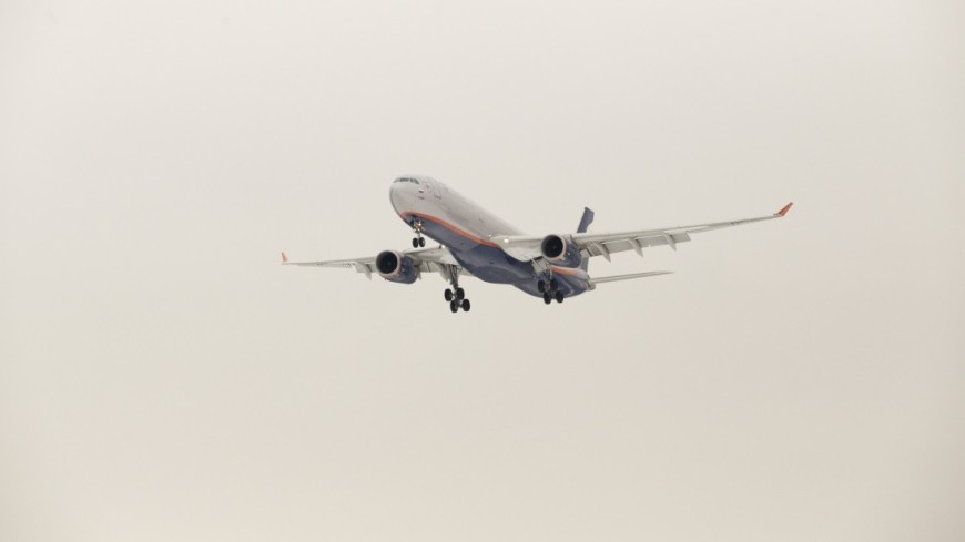 Самолёт экстренно сел вЕкатеринбурге из-за поломки печи набортовой кухне