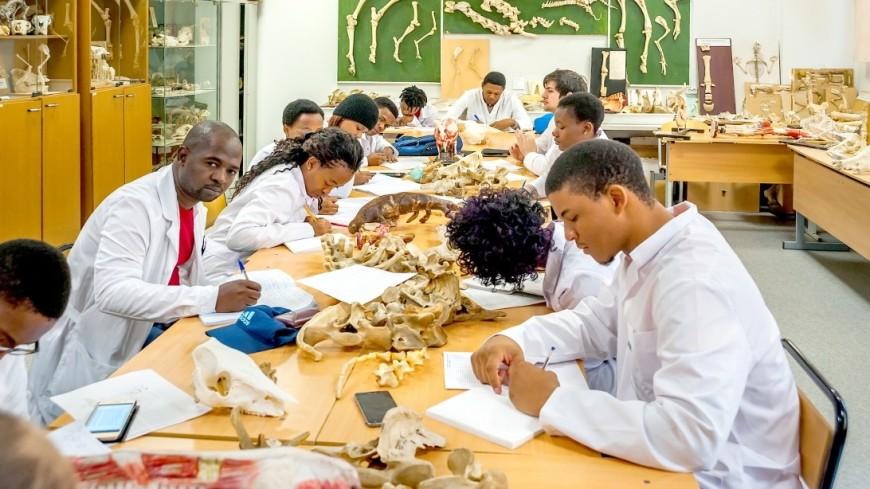 ВЮжной Африке обнаружили древнейшие следы гигантского динозавра