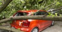 Гнев Земли. Почему стихийных бедствий становится все больше?